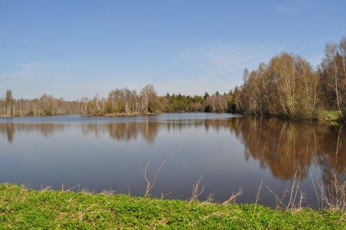 See im Pfrunger-Burgweiler Ried