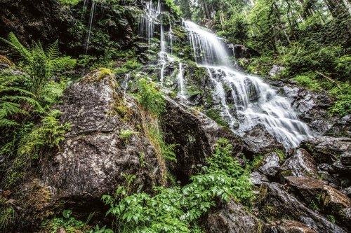 Sprühender Wasserfall umgeben von grünem Wald