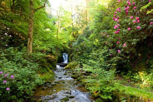 Geroldsauer Wasserfall-Rundweg