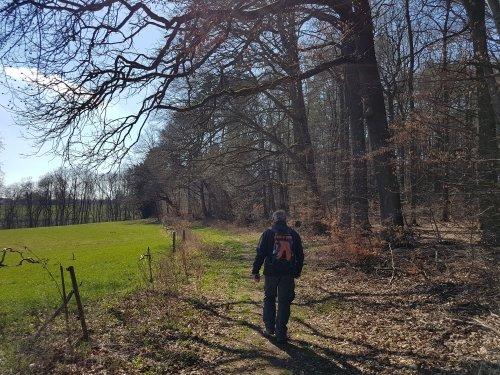 Wanderweg am Waldrand