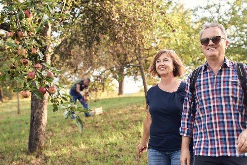 Genussvolles Wandern am Mössinger Früchtetrauf