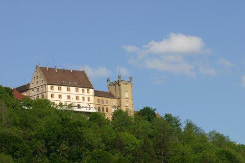 Ein Schloss mit Turm auf einem Berg.