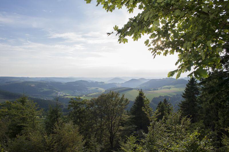Rothaarsteig-Spur Kahler-Asten-Steig