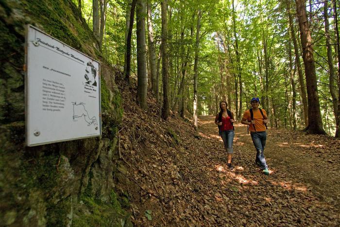 Infotafel zum Friedrich Nietzsche Wanderweg in Cham