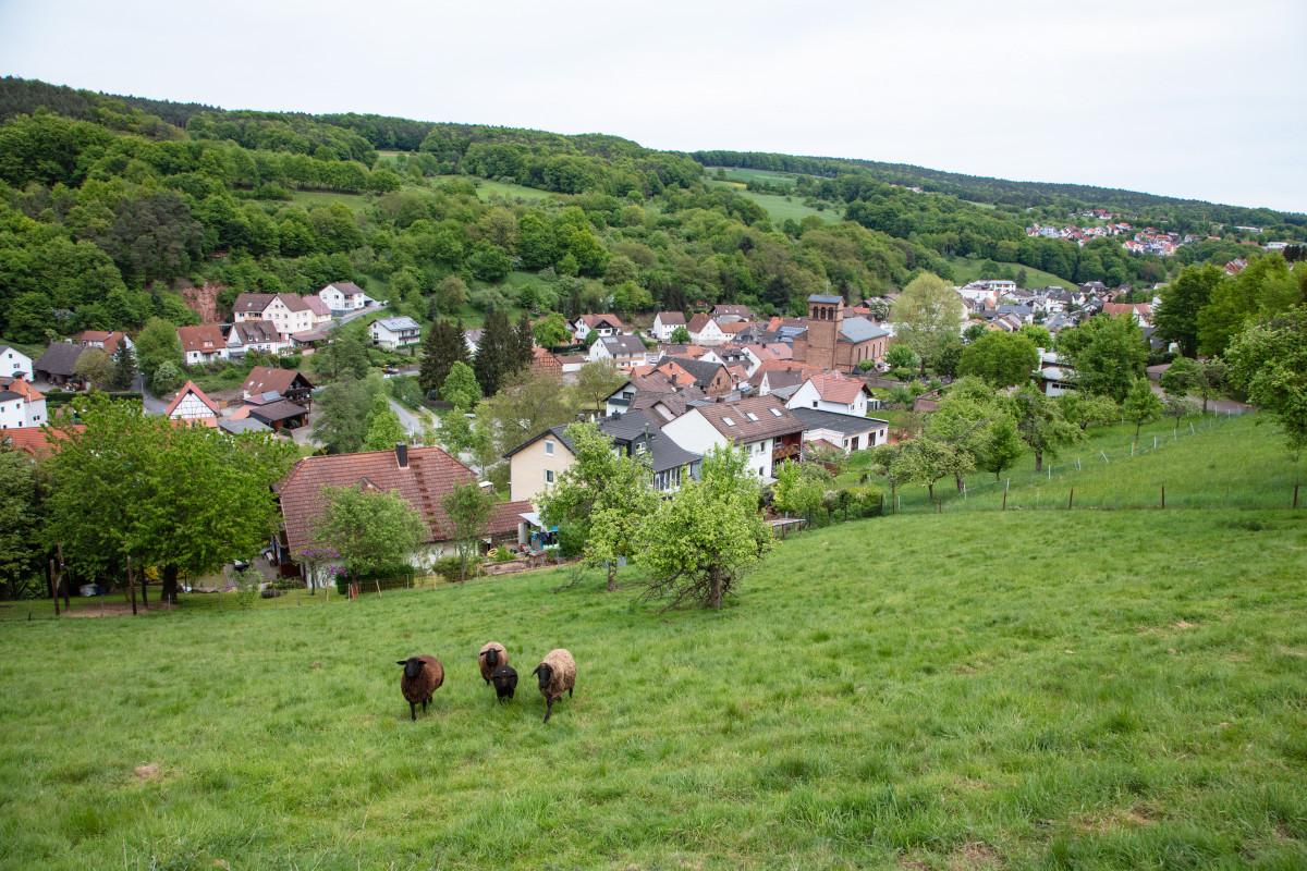 Leidersbach: RÄUBERLAND-Pfad Natur PUR erleben