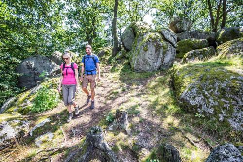 Druidenstein bei Kröblitz im Oberpfälzer Wald.