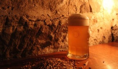 Schoppen im Bierkeller der Brauerei Rehbock