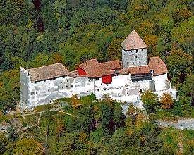 Burg_Hohenklingen_Luftansicht_5
