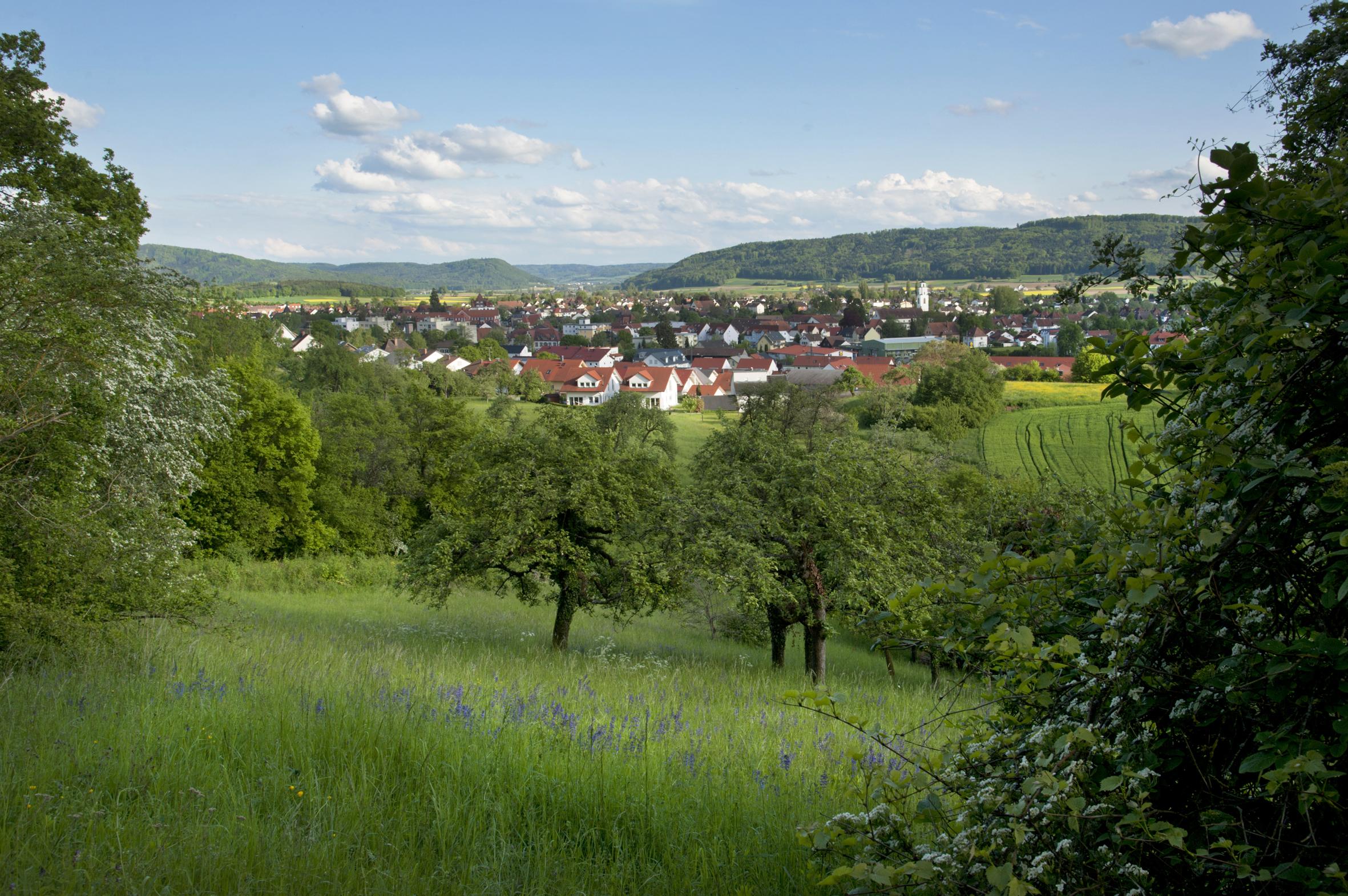 Landschaft für Annonce Touristik