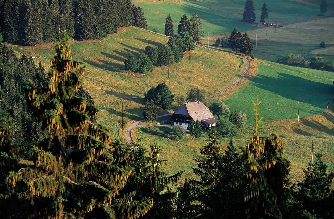 Schwarzwaldhof am Schluchsee