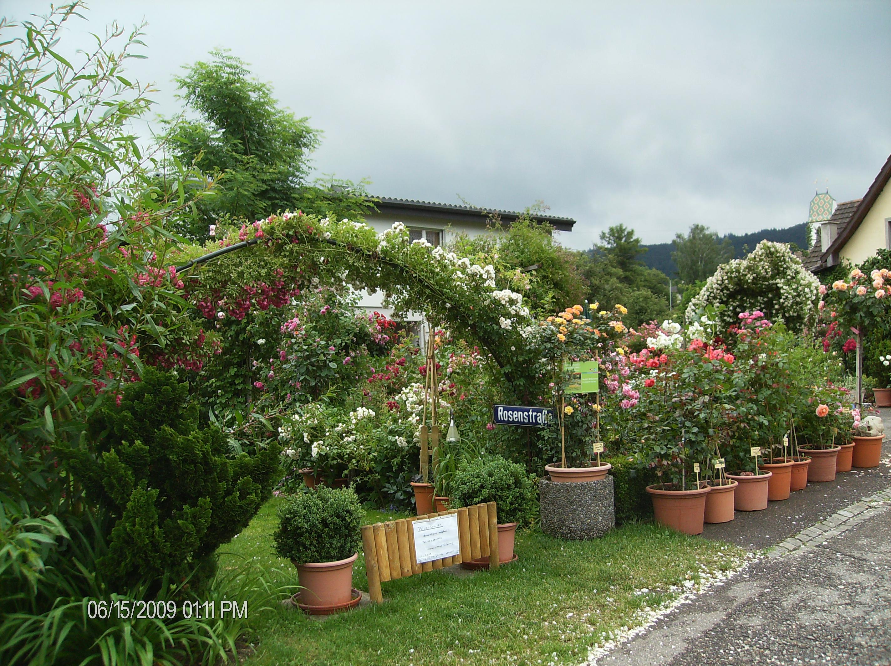 Kopie von 15.06.2009 Unser Garten 099