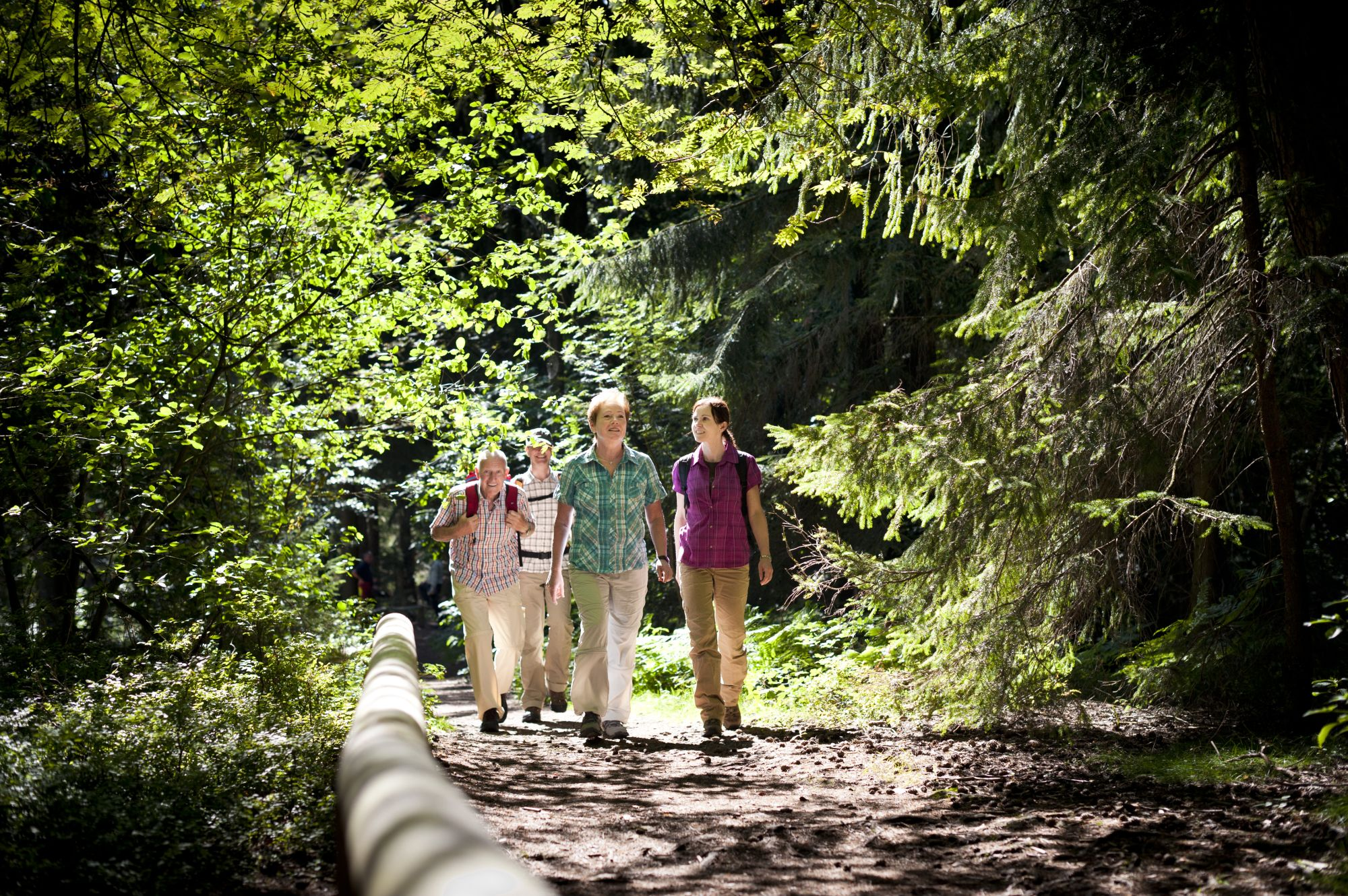 Naturnahes Wandern Gruppe