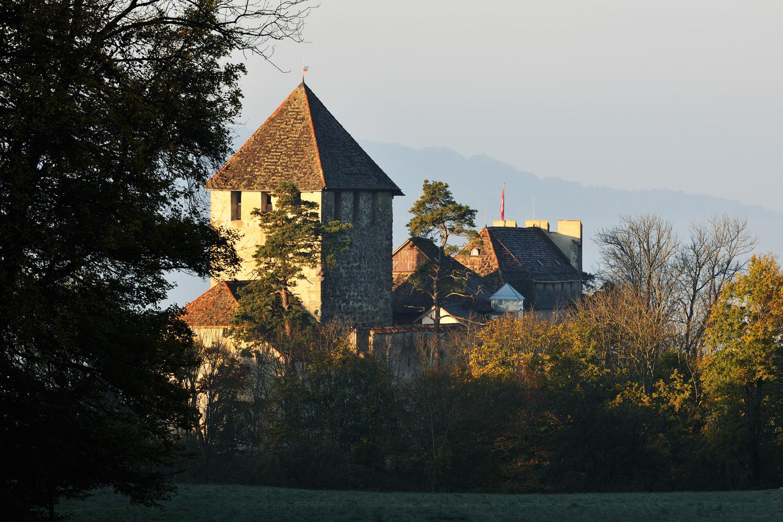 Burg Hohenkling
