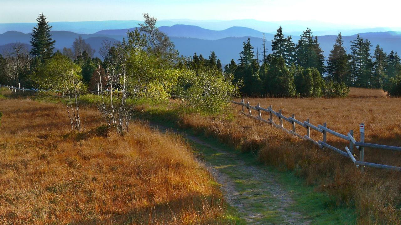Naturschutzgebiet Schliffkopf