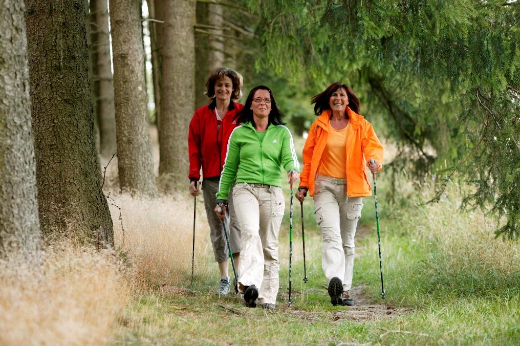 Briloner Nordic Walking