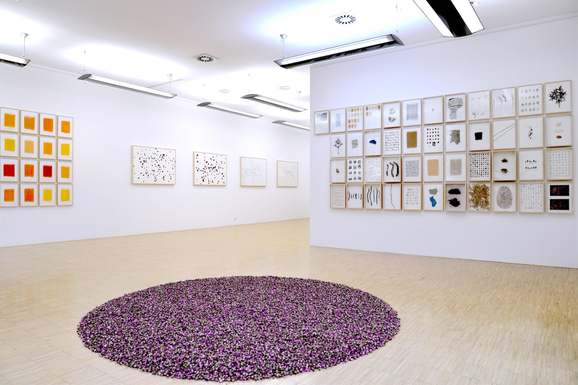 Mittendrin: Die Galerie Geiger in der Altstadt