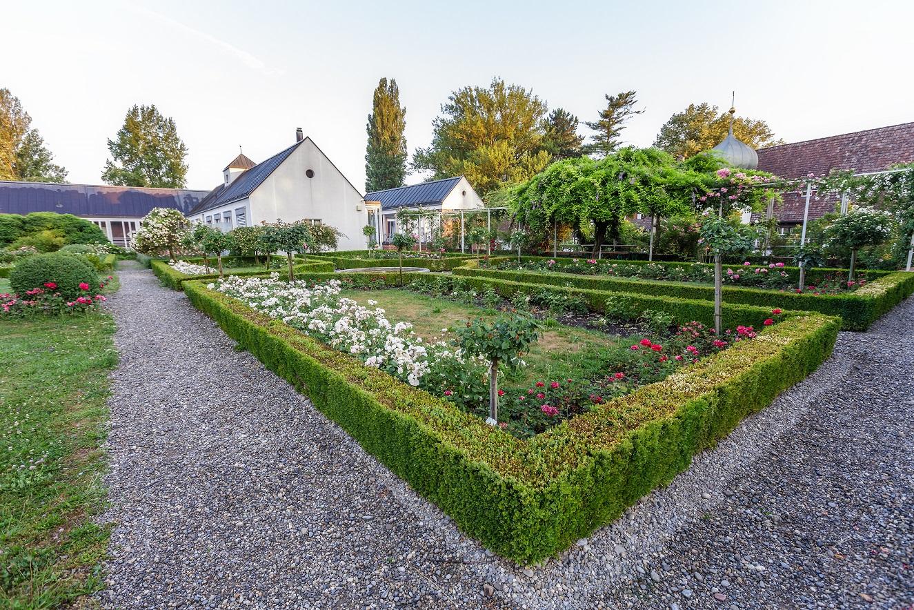 66_Rosengarten Feldbach_Steckborn_2020_klein