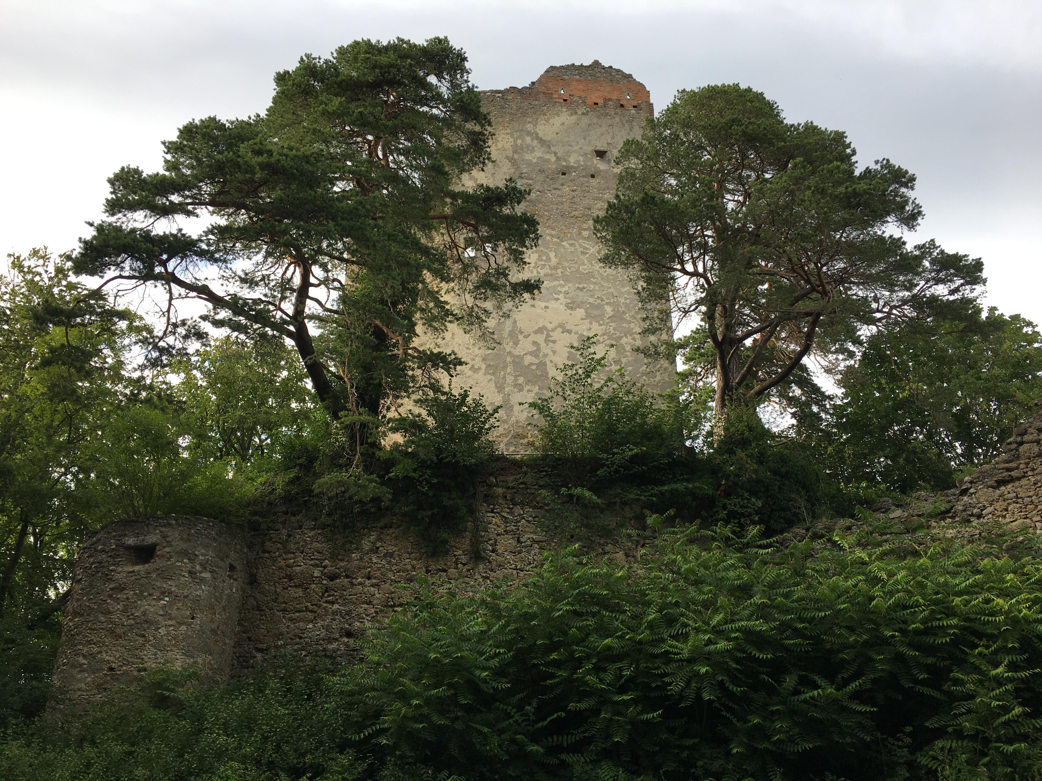 Ruine Alt-Bodman