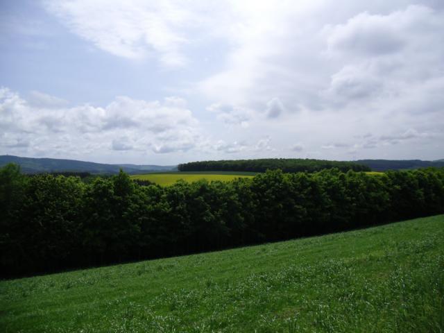 Aussicht vom Veldenz Wanderweg