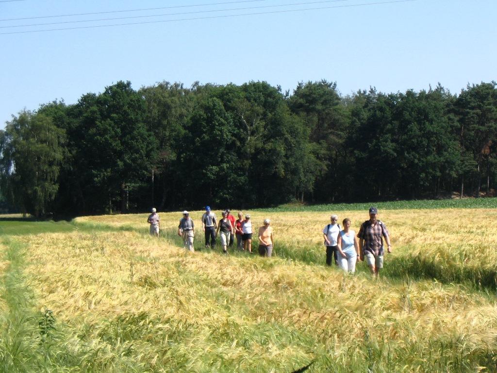 Wanderer auf dem Mühlenweg am Wiehengebirge