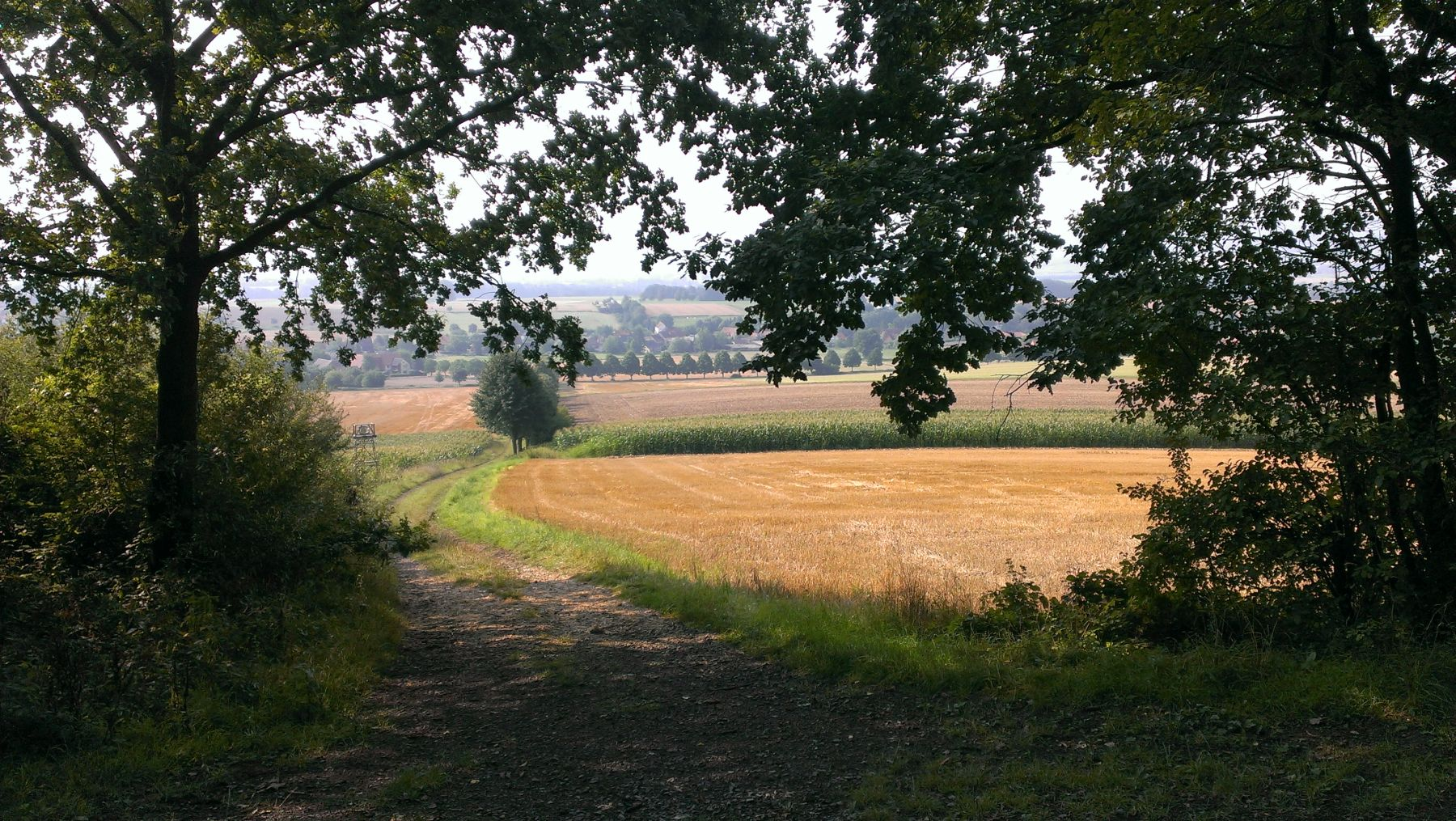 Drei Burgen Route Ausblick Rohden