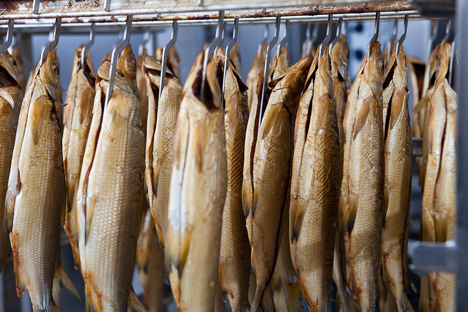 Fischhaus am F hrhafen1