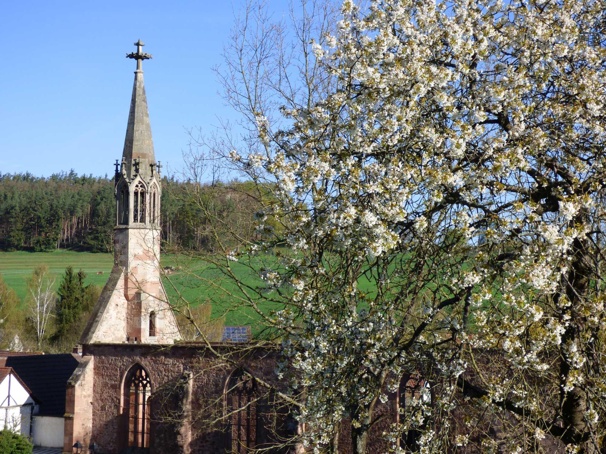 Sicht auf Kloster Rosenthal