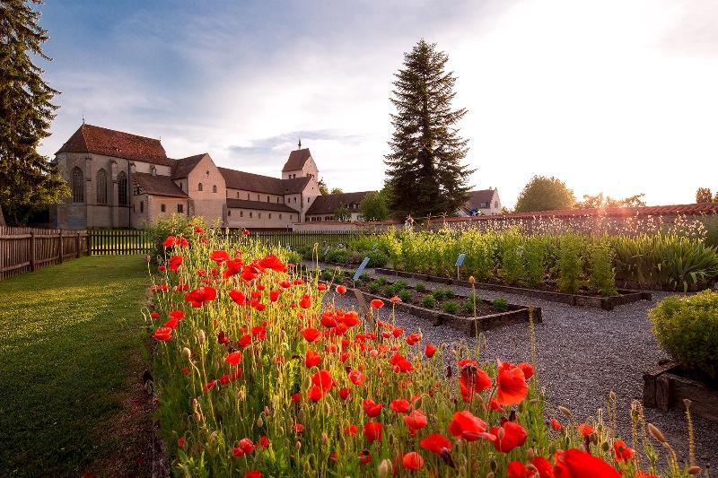 Kräutergarten mit Mohnblumen