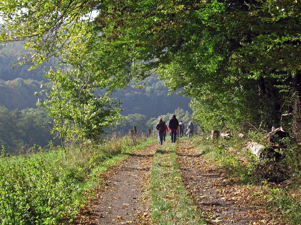 Wandern auf dem Vulkanring Vogelsberg