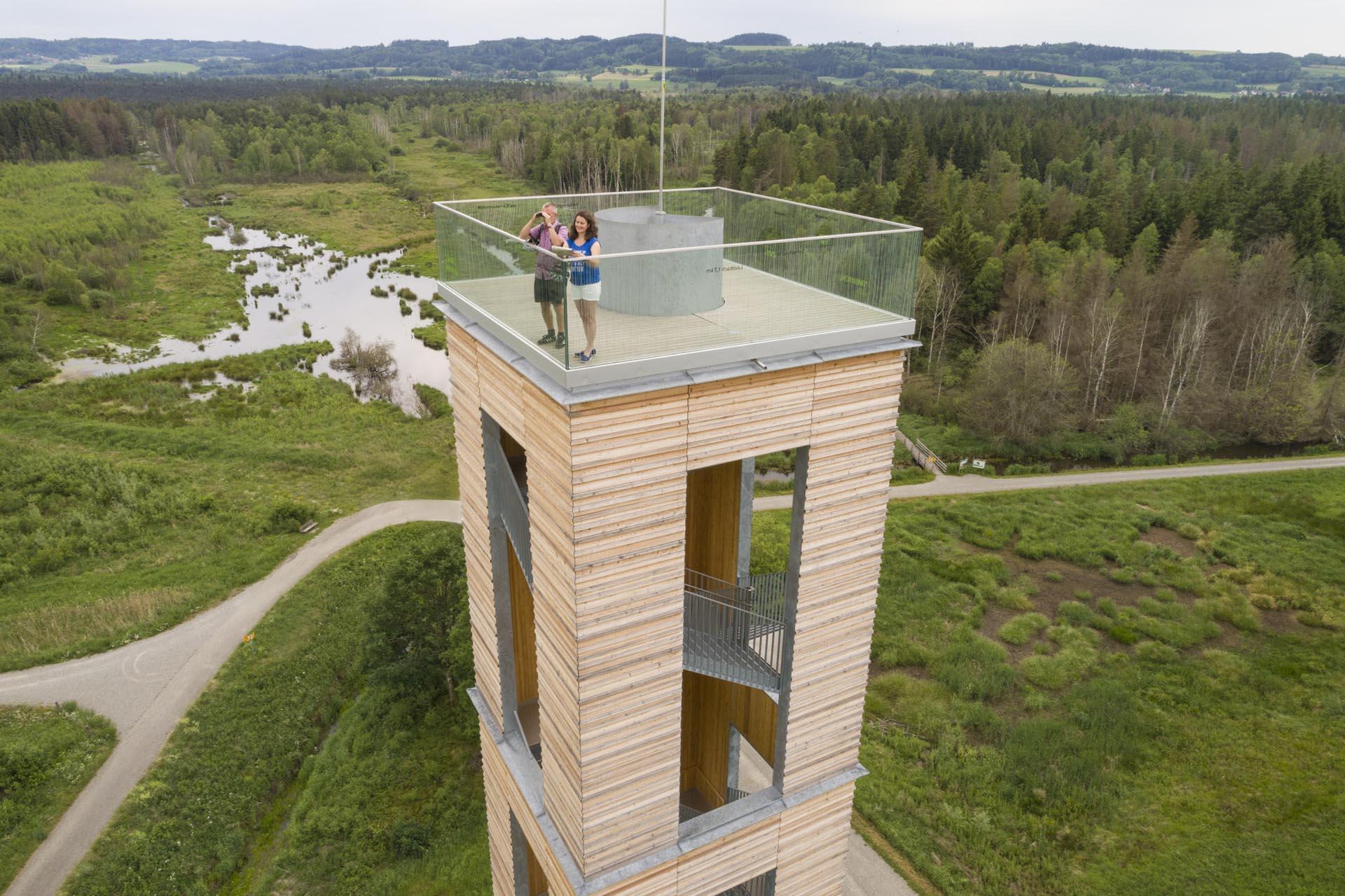 Ausblick vom Bannwaldturm