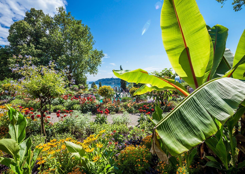 Blumenpracht auf der Insel Mainau