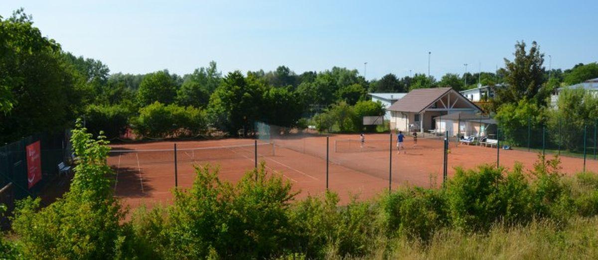 TennisplatzHorn14 (3)