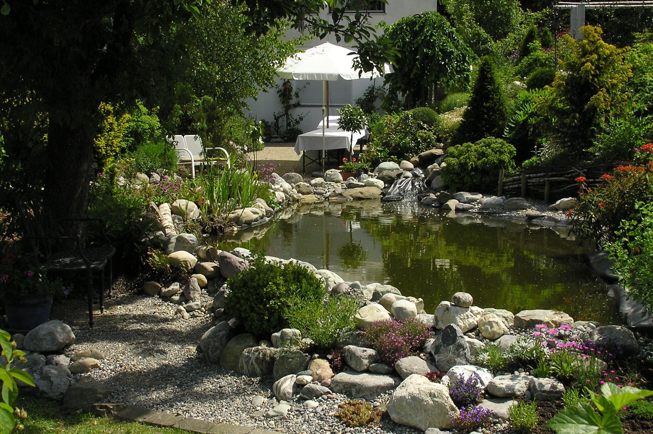 Garten Salamon Hildegard-Heilpflanzengarten