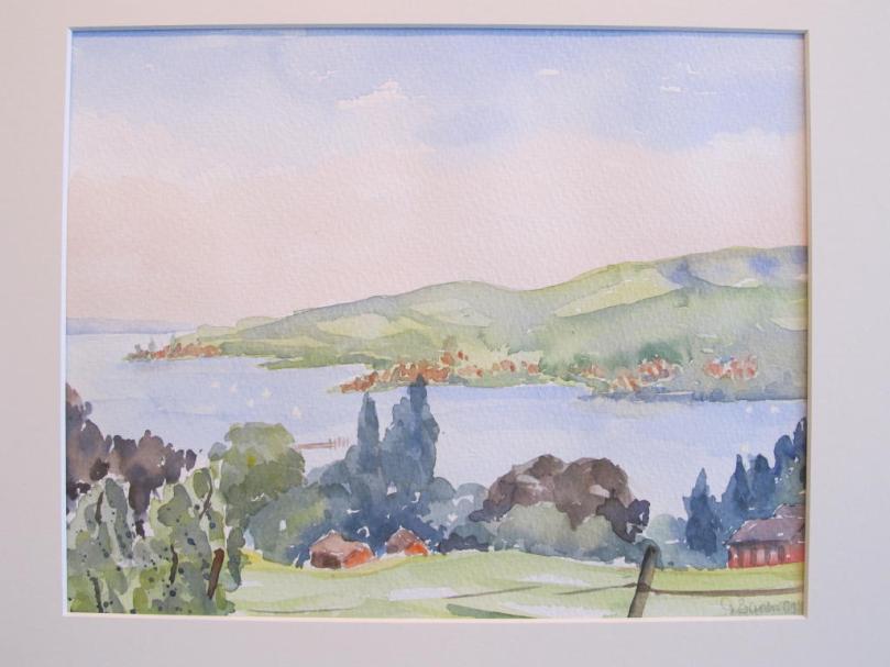 Blick auf den Rhein und Höri