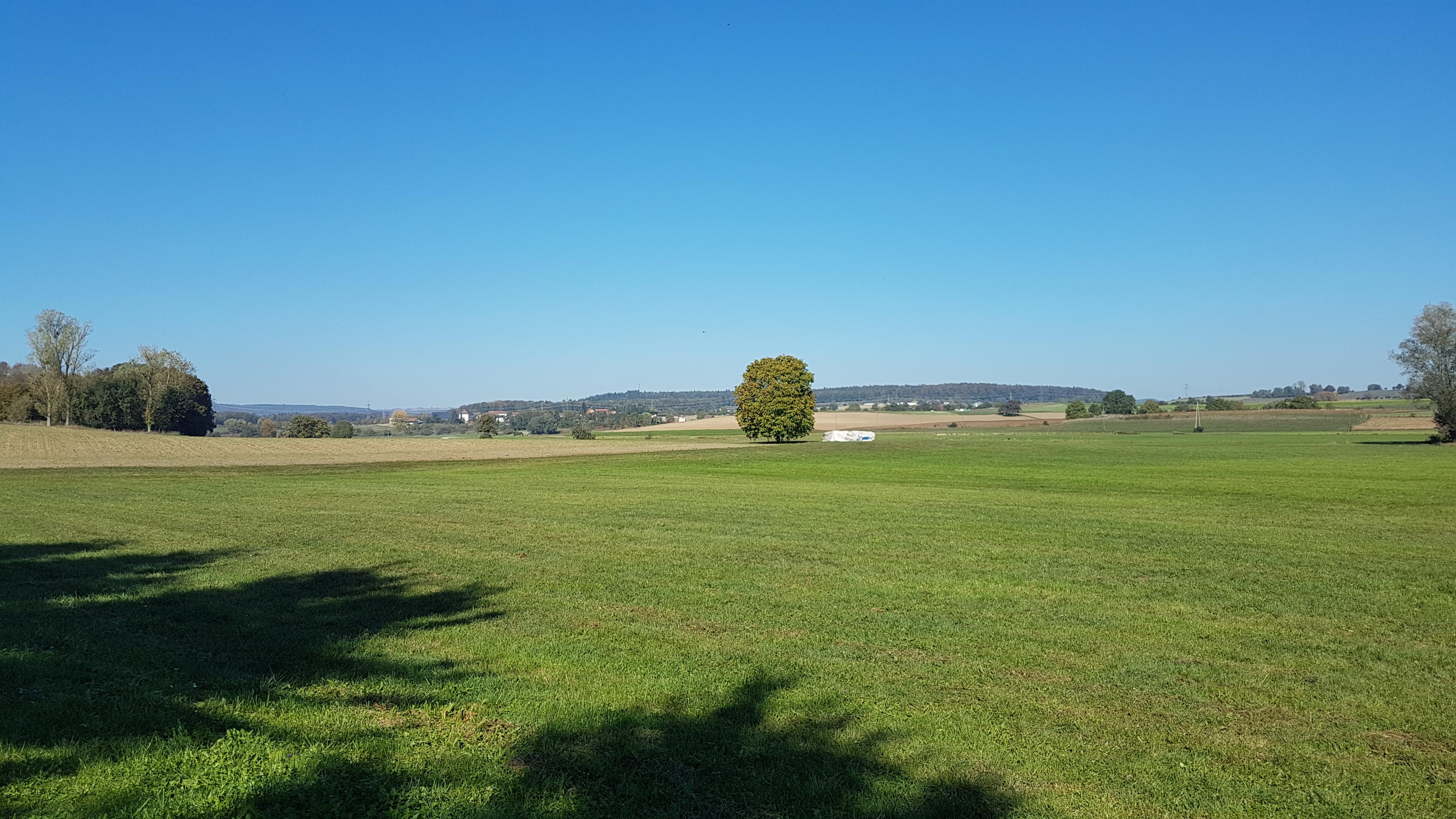 Naturschutzgebiet Weitenried mit Blick Richtung Wiechs