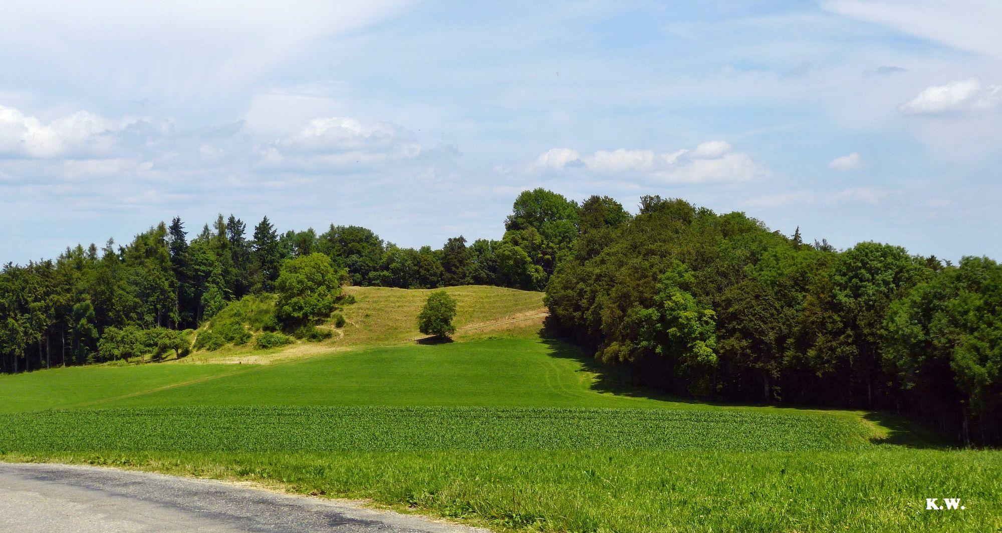 Weg zur Schrotzburg