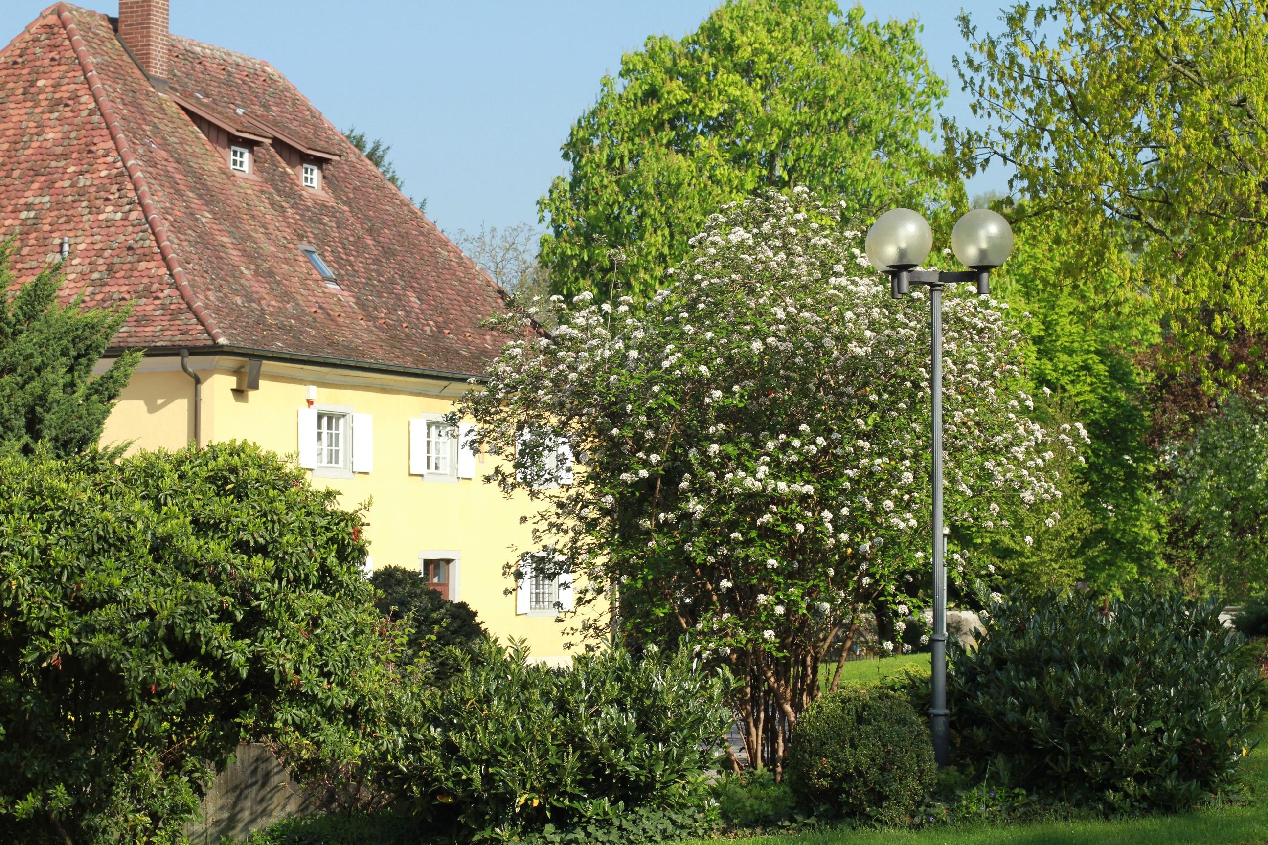 Hilzingen Museum