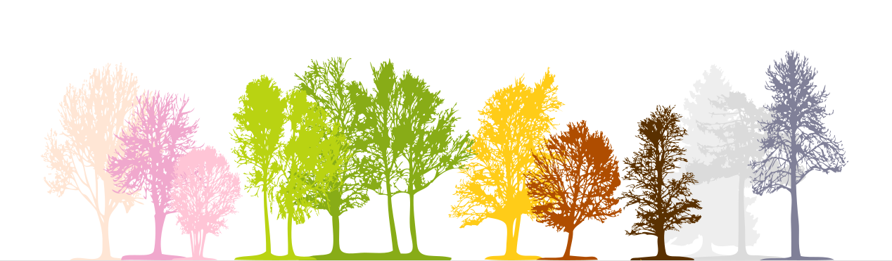 Wurzelkinder Waldkindergarten