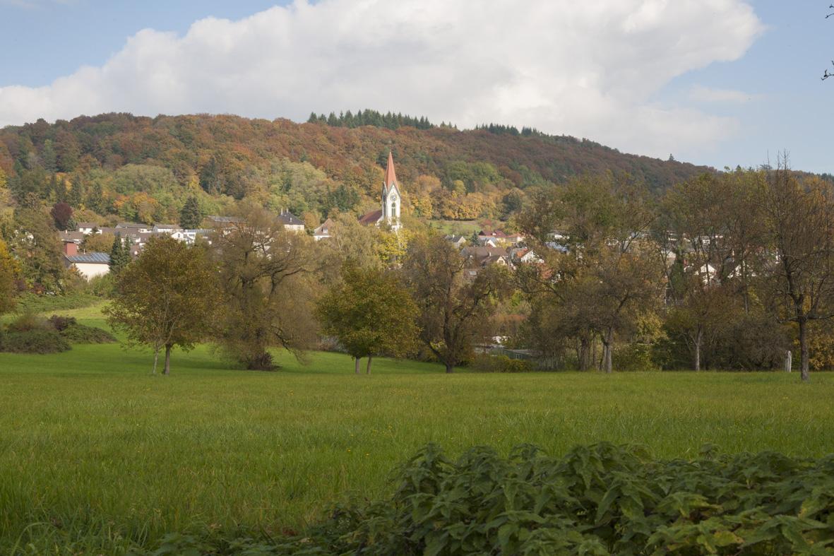 Gailingen Herbst_23