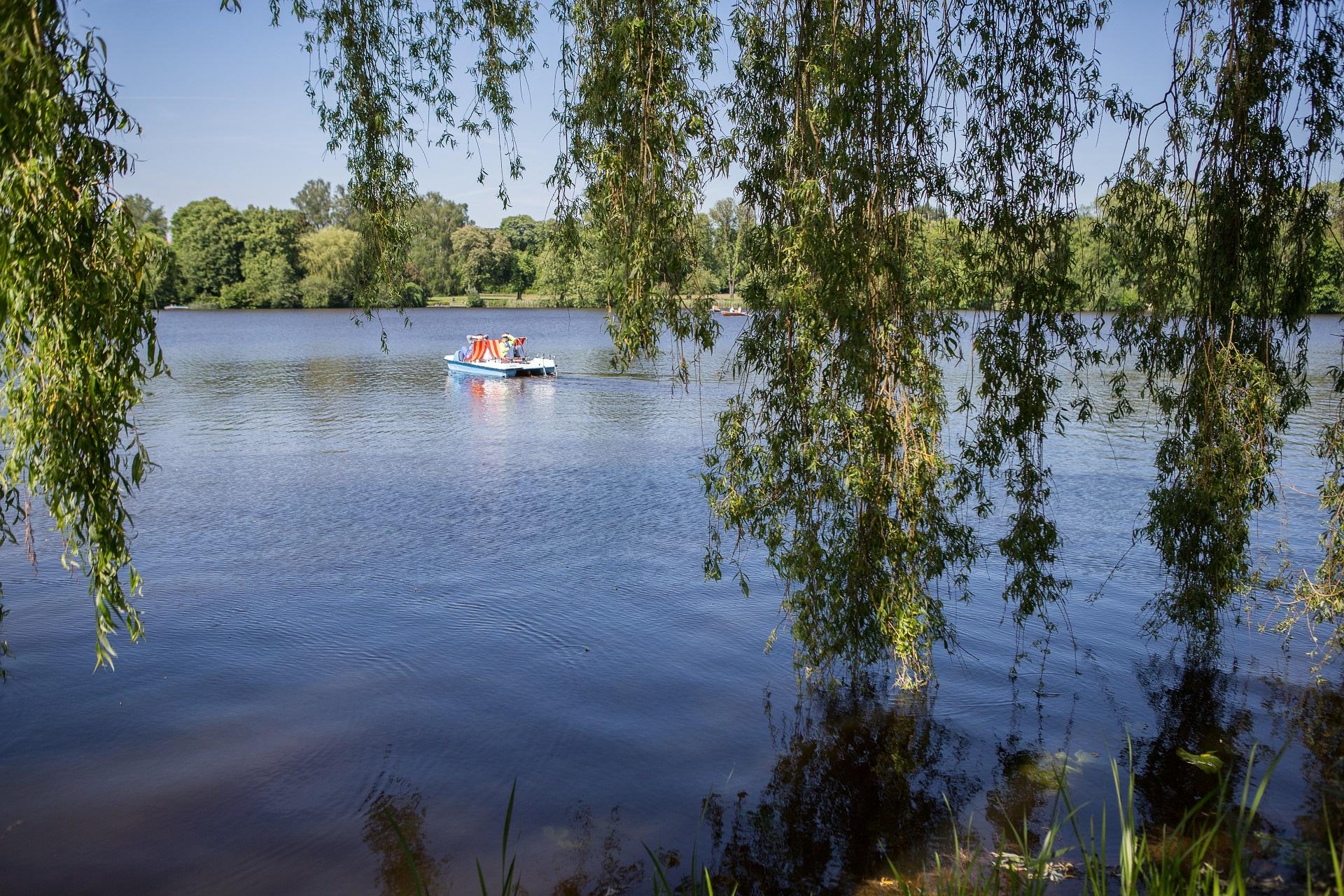Boot auf dem Stadtsee Bad Waldsee