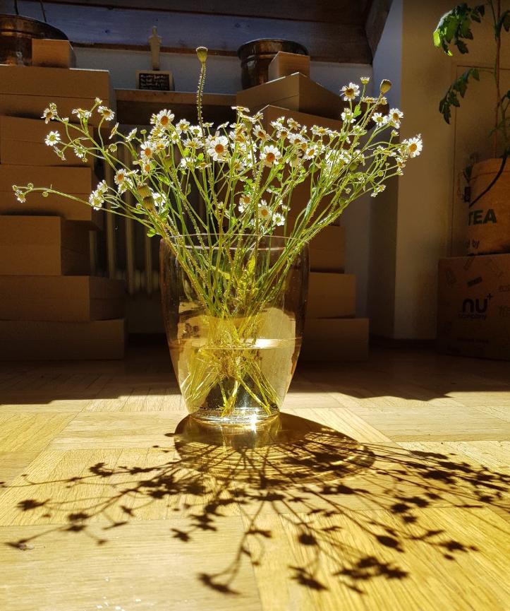 Karen Diessler Blumen 2