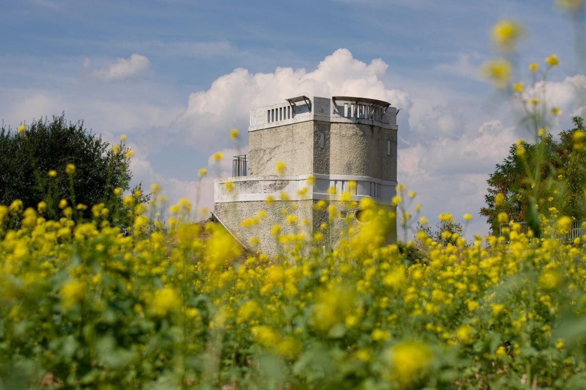 Wasserturm_Neumann18 (46)