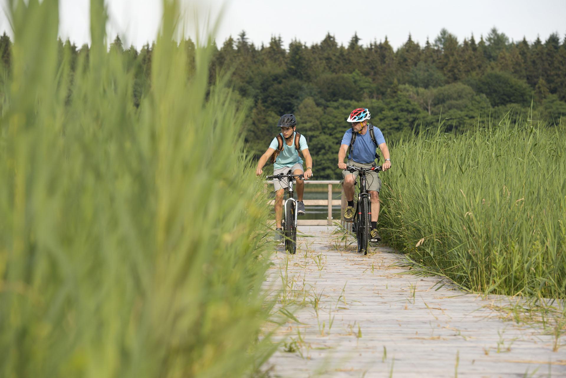 Zwei Radfahrer genießen die Natur auf ihrer Radtour