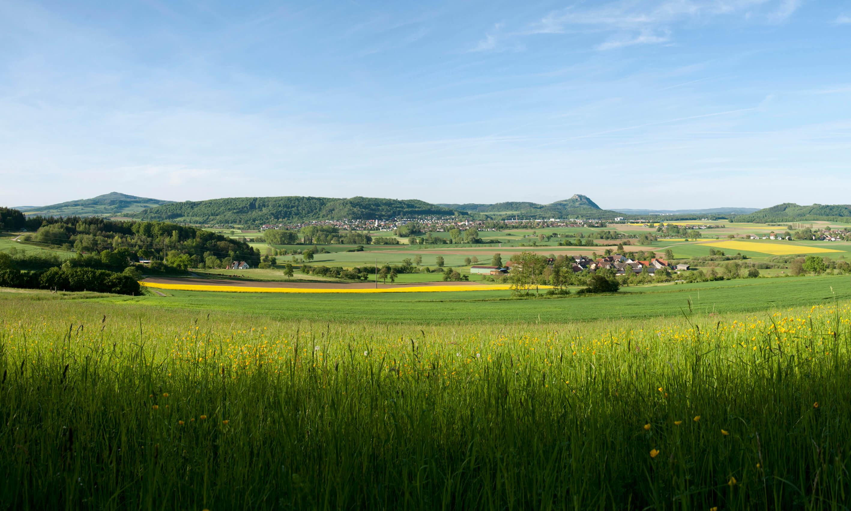 Landschaft Gottmadingen