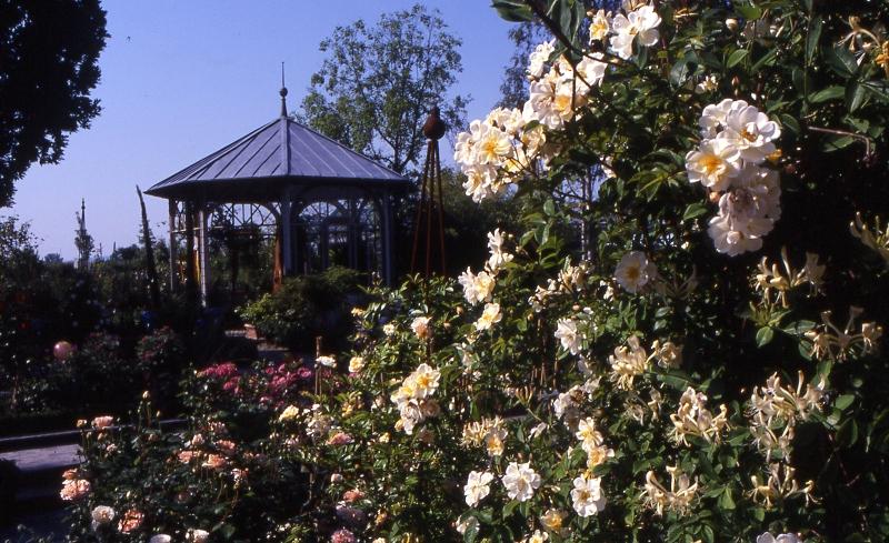 Garten Ammann