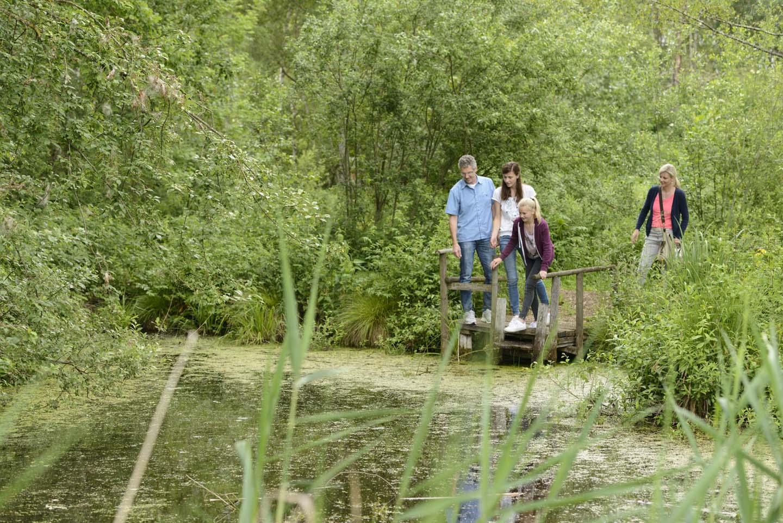 Auf Entdeckungstour im Naturschutzgebiet Wilhelmsdorf