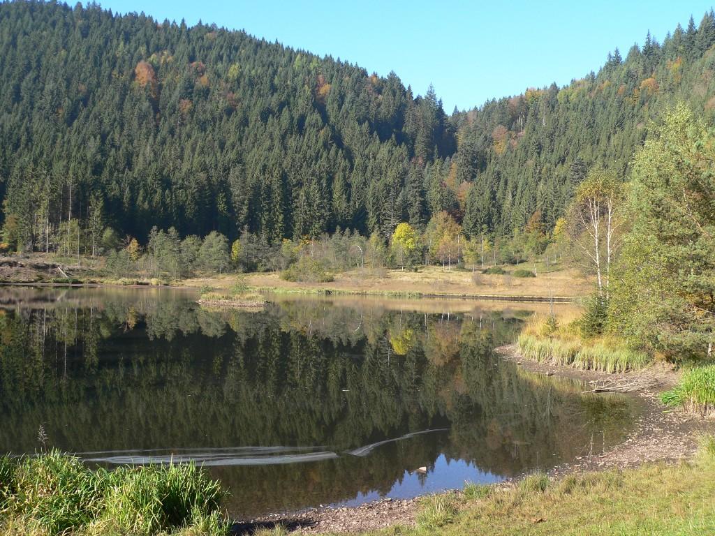 Seensteig